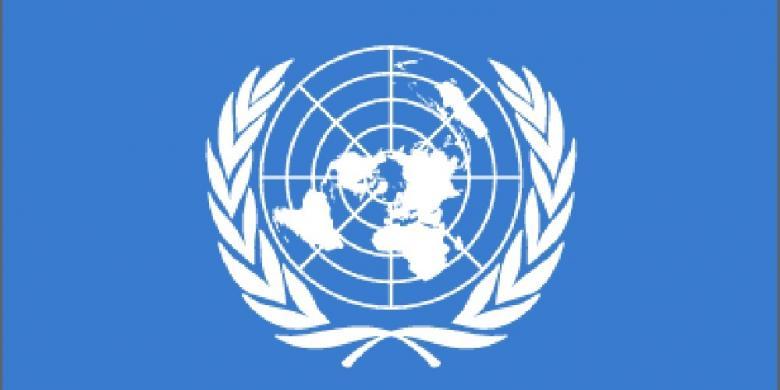 Peran dan Keterlibatan PBB di Indonesia - Donisaurus