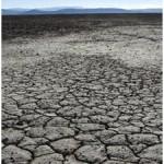 Tanah grumusol
