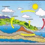 urutan siklus hidrologi