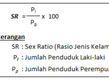 rumus sex ratio