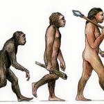 manusia dan sejarah