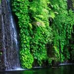 wisata-air-terjun-teleng-ngawi