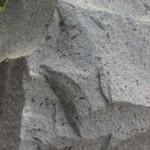 batu andesit